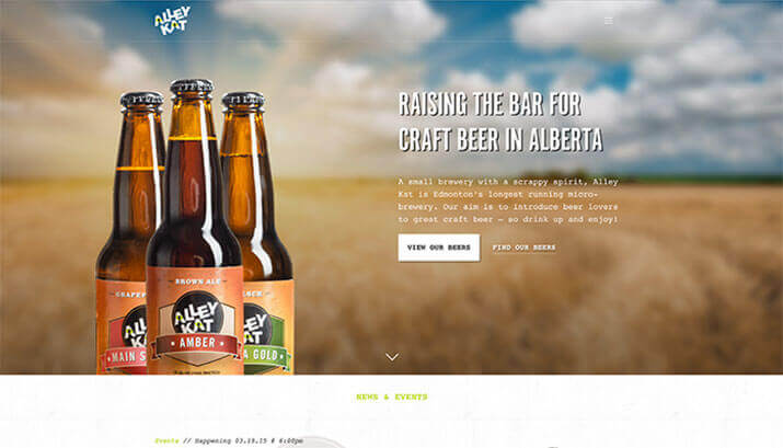 Alley Kat Brewing Co. Homepage Design Example