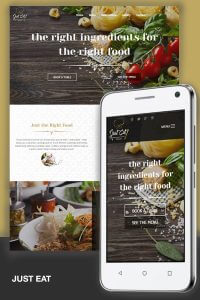 Just Eat divi child theme by TantoMarketing