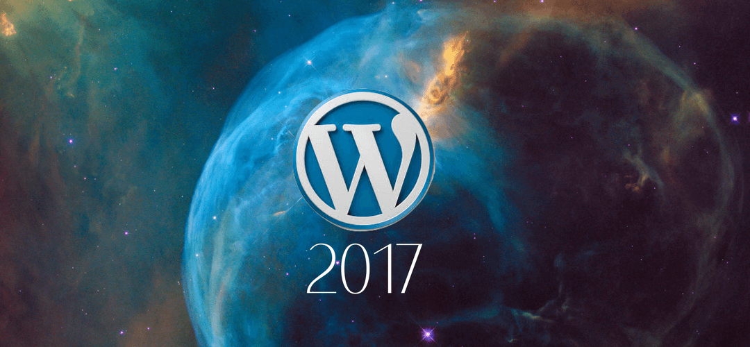 The State of the WordPress World 2017