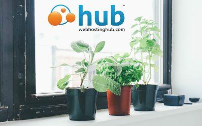 Web Hosting Hub WordPress Hosting Review