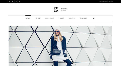 Poza Home Page Example